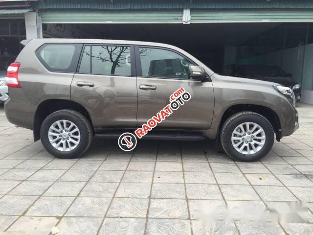 Cần bán xe Toyota Prado đời 2017, màu nâu-2