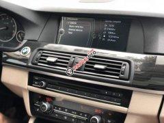 Bán BMW 5 Series 523i năm sản xuất 2010, màu trắng, nhập khẩu, giá tốt