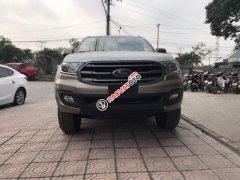 Bán xe Ford Everest năm sản xuất 2019, màu xám, nhập khẩu