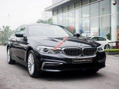 Bán ô tô BMW 5 Series G30 đời 2019, màu đen, nhập khẩu nguyên chiếc mới 100%