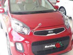 Tặng bảo hiểm thân xe - Kia Morning AT - Liên hệ Ms. Hương 0938 906 230