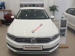 Bán Volkswagen Passat Blue Motion - trắng