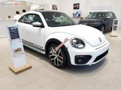 Bán Volkswagen Beetle Dune màu trắng, nhập khẩu nguyên chiếc từ châu Âu