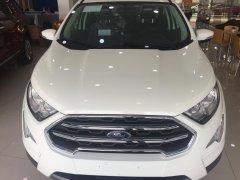 Nhận ngay Ford Ecosport - chỉ cần trả trước 130 triệu
