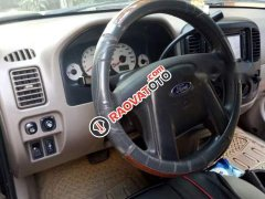 Bán Ford Escape sản xuất 2004, nhập khẩu, xe cam kết không đâm đụng không ngập nước