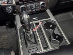 Bán Ford F 150 Raptor 2019, màu xám, xe nhập