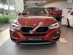 Cần bán BMW X6 đời 2019, màu đỏ, nhập khẩu