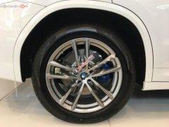 Bán xe BMW X3 xDrive20i đời 2019, màu trắng, nhập khẩu