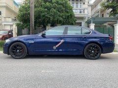 Bán BMW 5 Series 520i đời 2016, màu xanh lam, nhập khẩu