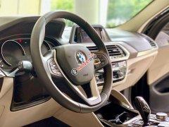 Cần bán xe BMW X4 xDrive 20i năm sản xuất 2019, nhập khẩu nguyên chiếc