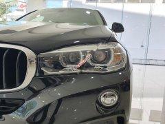 Cần bán BMW X6 XDrive35i đời 2019, nhập khẩu