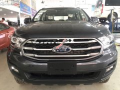 Bán xe Ford Everest Ambient 2.0 AT đời 2019, xe nhập