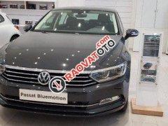 Cần bán lại xe Volkswagen Passat 2018 xe còn mới