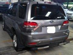 Bán xe Ford Escape XLT sản xuất năm 2009, màu xám còn mới