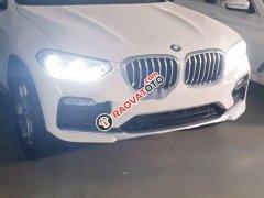Cần bán xe BMW X4 đời 2019, xe nhập