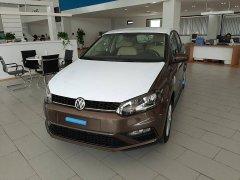 Bán ô tô Volkswagen Polo đời 2020, màu nâu, nhập khẩu chính hãng, giá 695tr